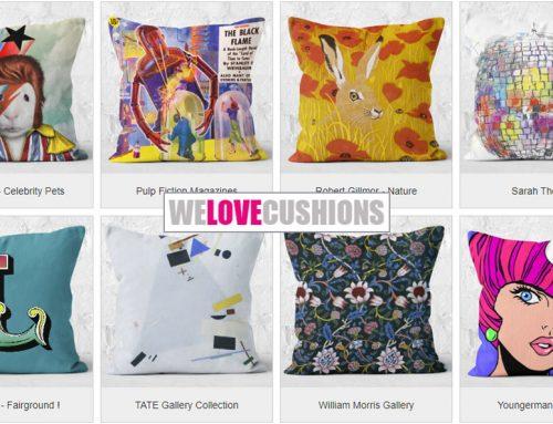 We Love Cushions
